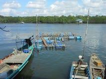 Cage aquaculture farming Royalty Free Stock Photos