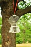 Cage avec l'oiseau Photo stock