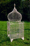 Cage for birds. Isolated on a green background Royalty Free Stock Photography