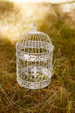 Cage for birds. The cage for birds costs on a grass Royalty Free Stock Photo