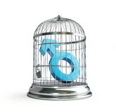 Cage for birds man Royalty Free Stock Photo