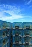 Cage bleue de homard Images stock