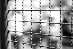 The cage. And bokeh Stock Photo