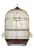 Cage d'or Photo libre de droits