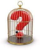 Cage d'or avec la recherche (chemin de coupure inclus) illustration stock