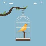 Cage d'oiseau illustration stock