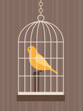 cage d'oiseau Image stock