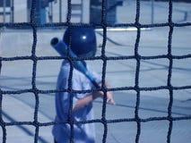 Cage d'ouate en feuille Images libres de droits
