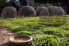 Cage de bambou de poulet Photos libres de droits
