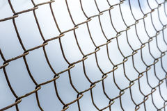 The cage design background. Royalty Free Stock Photography