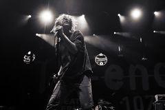 Cage the Elephant Royalty Free Stock Photography