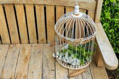 Cage en acier sur une chaise en bois Images libres de droits