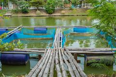 Cage fish farming in ponds royalty free stock photography