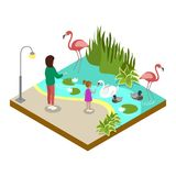 Cage with flamingos isometric 3D icon. Public zoo with wild animals and people, zoo infrastructure element for design vector illustration Stock Photography