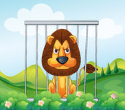 A cage in the hill with a lion Royalty Free Stock Image