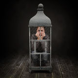 Cage Stock Photography