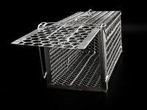 Cage mouse trap Royalty Free Stock Image