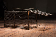 Cage rouillée de rat photographie stock