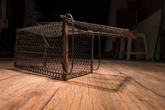 Cage rouillée de rat photos libres de droits