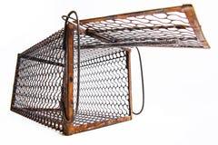 Cage rouillée de rat Photo stock