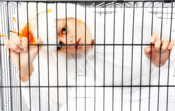Caged Royalty Free Stock Image