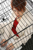 Caged royalty free stock photo