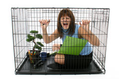 Caged Royalty Free Stock Photos