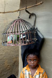 Caged Bird Royalty Free Stock Photography