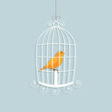 Caged canary. Decorated hanging bird cage with a perched yellow canary Royalty Free Stock Photography