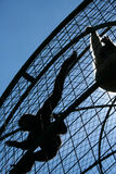 Caged Monkeys. Silhouettes of two monkeys in a cage against clear blue sky, contrejour light - reflections Stock Images