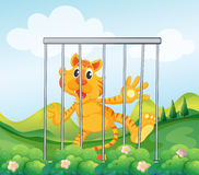 A caged tiger. Illustration of a caged tiger Stock Image