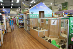 Cages d'animal familier dans un supermarché d'animal familier Photographie stock libre de droits