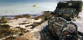 Cages de langoustine sur la plage Images libres de droits