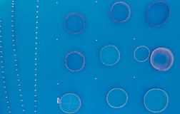 Cages for fish farming aerial view stock photography