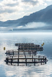 Cages for fish farming Stock Photos
