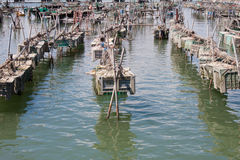 Cages for the harvesting of shellfish. Cages for shellfish fishing in Chioggia, the little Venice Royalty Free Stock Photography