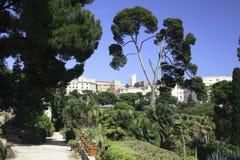 Cagliari, Botanische tuinen Stock Afbeeldingen
