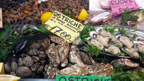 Cagliari, Italy - 22 March, 2017: Traditional fish market stall Royalty Free Stock Photography