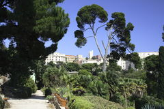 Cagliari, jardins botânicos Imagens de Stock