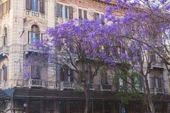 Cagliari, Sardinige, cityscape van de de stadswoning van Italië oude Royalty-vrije Stock Foto