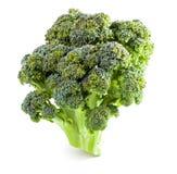 cagliata Primo piano dei broccoli Fotografia Stock Libera da Diritti