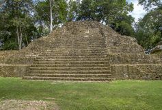 Cahal Pech in Belize Royalty Free Stock Photos
