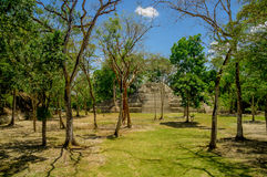 Cahal pech cayo belize Royalty Free Stock Images
