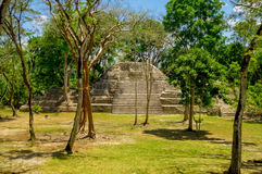 Cahal pech cayo belize Stock Images