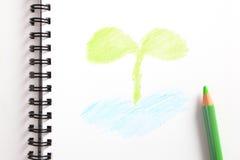 Cahier avec l'arbre jeune vert et le crayon vert Photos libres de droits