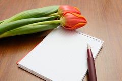 Cahier avec le crayon lecteur Photos stock