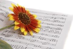 Cahiers avec des notes sur la musique et la fleur Photos libres de droits
