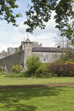 Cahir与橡树, Cahir的城堡地面 库存照片