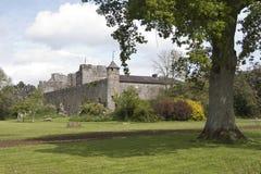 Cahir城堡地面, Cahir, Co Tipperary 免版税图库摄影