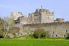 cahir城堡爱尔兰 免版税图库摄影